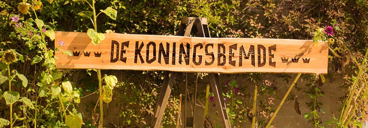 DE KONINGSBEMDE